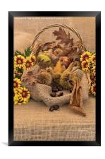 Autumn in a Basket, Framed Print