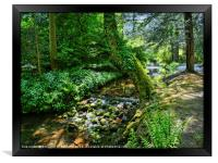 """Dappled sunshine at the stream"", Framed Print"