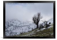 On a snowy day,, Framed Print