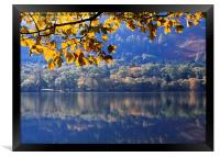 Autumn at Loweswater, Framed Print