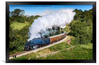 Farewell Sir Nigel Gresley, Framed Print
