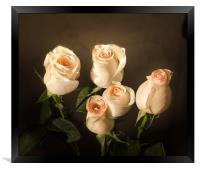 Roses, Framed Print