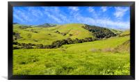 Green Meadow, Jalama Road CA, Framed Print