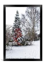 Winter wonderland, Framed Print