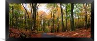 Autumn, Framed Print