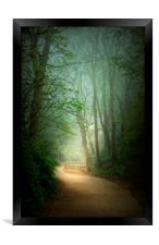Mysterious Path , Framed Print