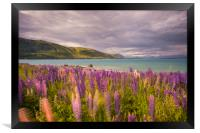 Lake Tekapo, Framed Print