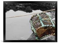 Lobster Creel , Framed Print