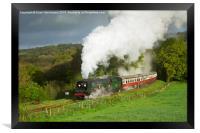 34007 Wadebridge on the Bodmin & Wenford Railway, Framed Print