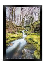 Venford Brook Dartmoor, Framed Print