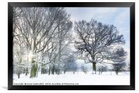 Snow covered forest with early morning sunrise, Framed Print