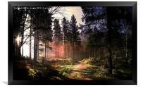 Sunset forest, Framed Print