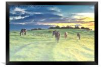 Misty Sunrise horses, Framed Print