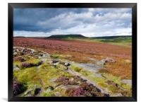 Peak Distict heather moors near Hathersage, Framed Print