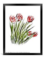 Poppies for Remembrance , Framed Print