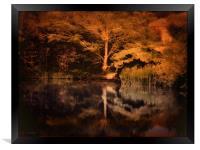 Autumnal Colours, Framed Print