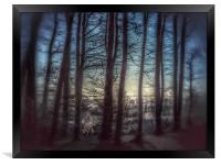 Misty Winters  Forest , Framed Print