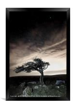Lonesome Tree, Framed Print