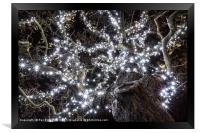 Christmas Lights , Framed Print