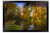 Basingstoke Canal in Autumn , Framed Print