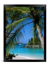 Trunk Bay, St John , US Virgin Islands, Caribbean., Framed Print