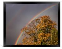 Autumn Rainbow, Framed Print