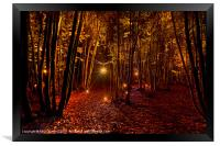 Electric Forest, Framed Print