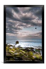 Stormy Beach, Framed Print