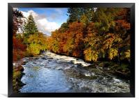 Autumn in the glen, Framed Print