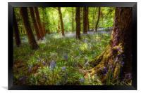 Woodland Charm, Framed Print