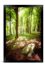 Dappled Shade, Framed Print