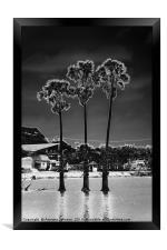 Moon Trees #1, Framed Print