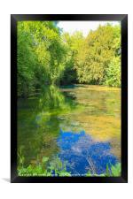 Silent Pool, Framed Print
