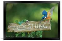 No fishing!, Framed Print