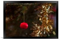 Tiny Bauble On A Christmas Tree, Framed Print