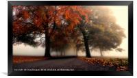 Foggy Autumn Trees, Framed Print