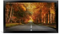 Autumn Drive, Framed Print
