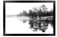 Dramatic trees, Framed Print