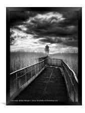 Newport Lighthouse                                , Framed Print