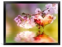 Spring fever, Framed Print