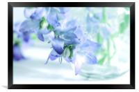 Carpathian Bellflower blue Clipps, Framed Print
