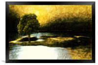 The tree at the Silver Lake , Framed Print
