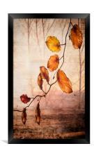 Autumn melody , Framed Print