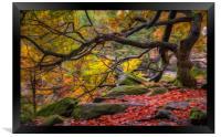 Autumn in Padley Gorge, Framed Print