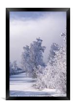 Beneath the Frosty Shroud, Framed Print