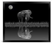 Elephant By Moonlight, Framed Print
