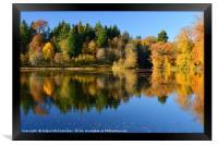 Penicuik Pond autumn colours 2016, Framed Print