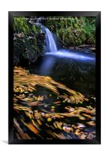 Autumn Leaves moving in a River, Framed Print