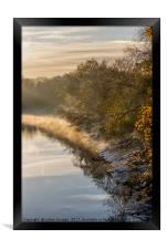 Autumn Light, Framed Print