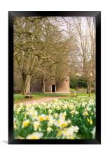 Cow Tower in the Spring time., Framed Print